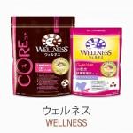 wellnessfood